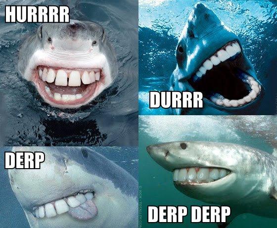 shark_derp_durr_hurr.jpg